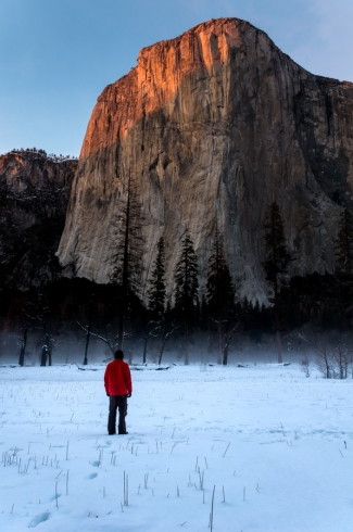 El Capitan Meadow. Yosemite National Park, CA