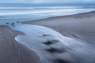 Coast Camp. Point Reyes National Seashore, CA