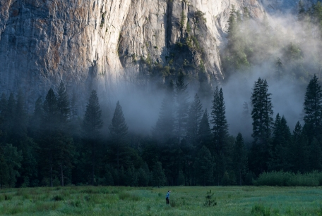 El Capitan Meadow. Yosemite Valley, CA